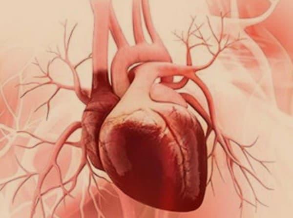 Etiologi cardiomyopathy