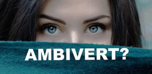 Ambivert